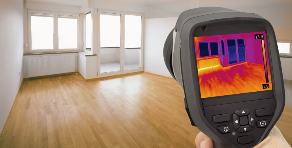 leak detection using infrared in an empty home